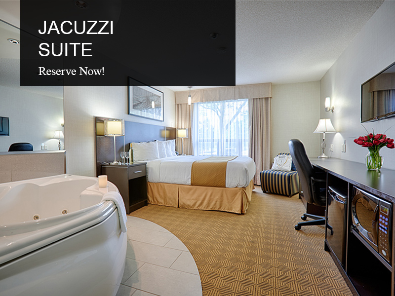 Jacuzzi Suite - Room Type