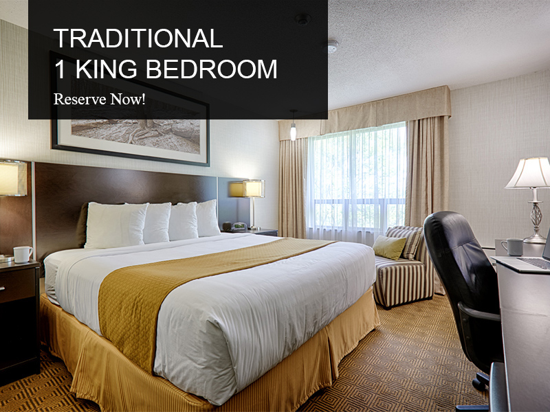 Traditional King Room - Room Type -